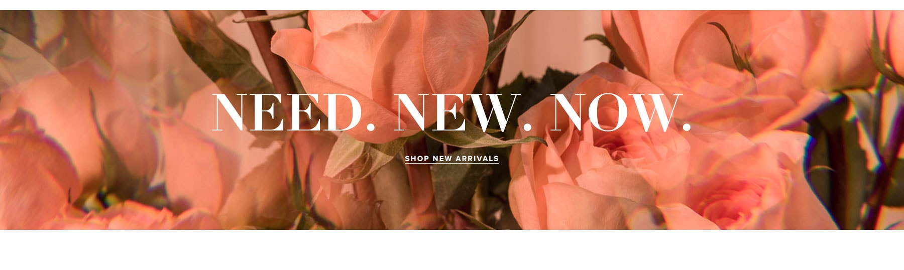 NEED. NEW. NOW. Shop New Arrivals.