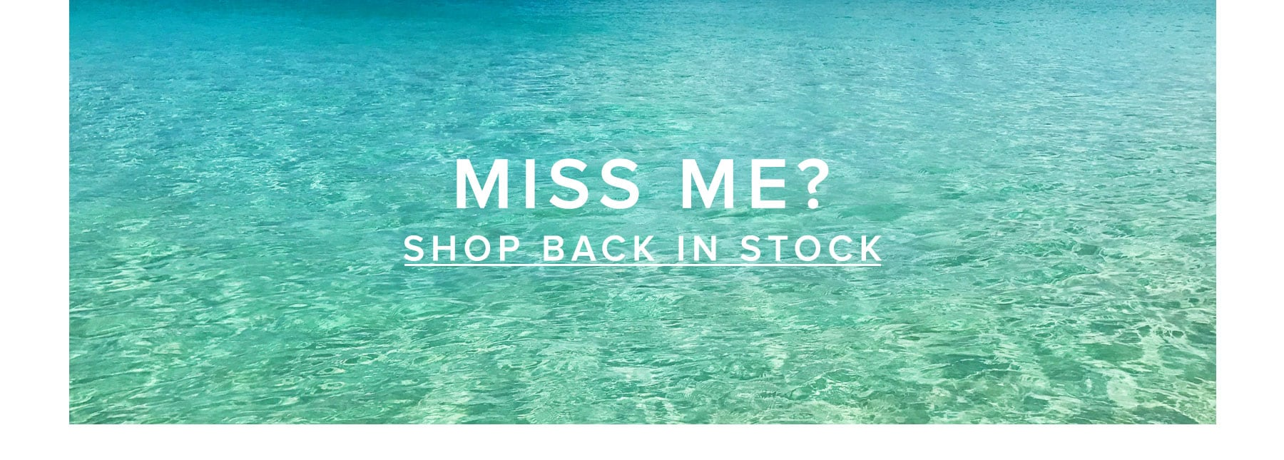 Shop Back in Stock