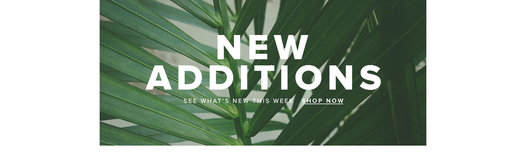 See what's new this week, Shop New Arrivals