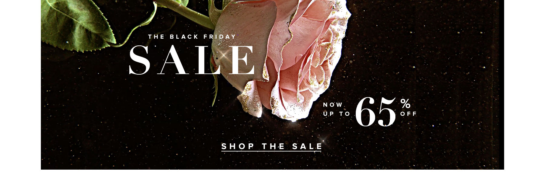 The Black Friday Sale. Now up to 65% off. Shop the Sale.