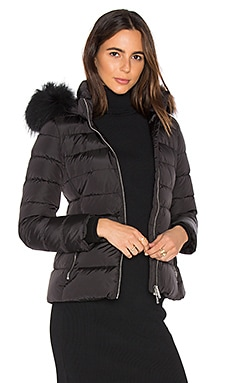 Down Jacket with Asiatic Raccoon Fur Collar in Black