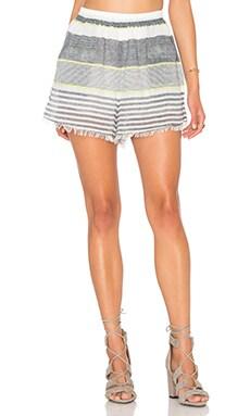 Ibizia Short in Lime Stripe