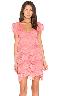 Jacqueline Dress in Coral