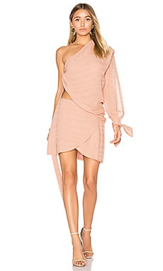 Rosewood Dress in Blush