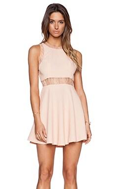 Lace Insert Dress in Blush