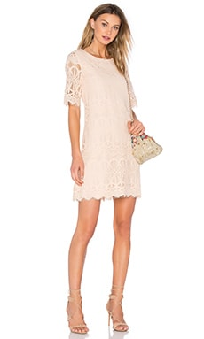 Cocktail Lace Dress in Whisper Pink
