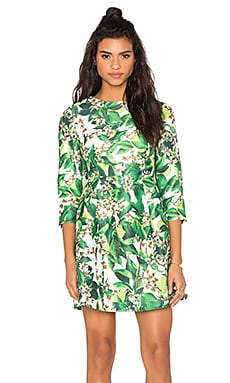 Long Sleeve Print Dress in Green