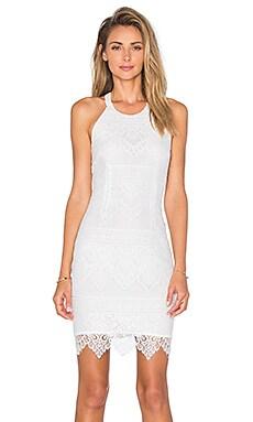 BLACK Lace Mini Dress in White