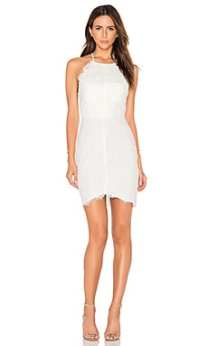 BLACK Mixed Chiffon Lace Bodycon Dress in White