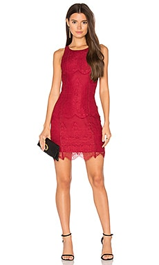 BLACK Lace Bodycon Dress in Cranberry