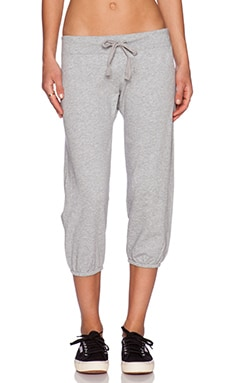 Light Weight Cashmere Terry Sweatpant in Heather Grey