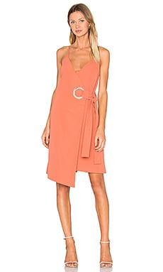 On The Line Dress in Burnt Sienna
