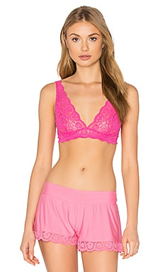 Tulip Lace Bra in Palm Beach