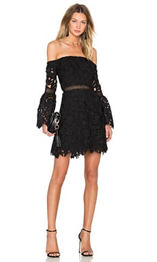 Wild Flower Lace Mini Dress in Black