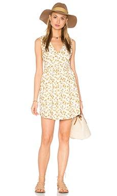 Alhena Dress in Daisy