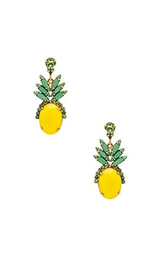 Pineapple Studs in Tropical