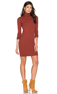 Rib Long Sleeve Turtleneck Mini Dress in Russet