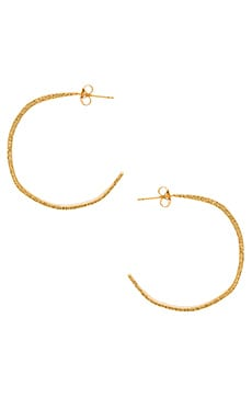Paloma Hoops in Gold