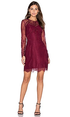 Shirley Lace Dress in Bordeaux