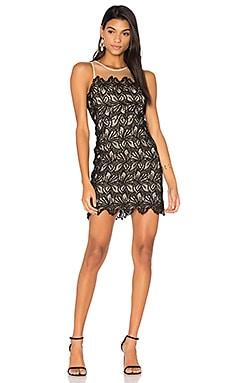 Sleeveless Mini Dress in Black & Taupe