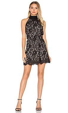 Cyndi Lace Dress in Caviar