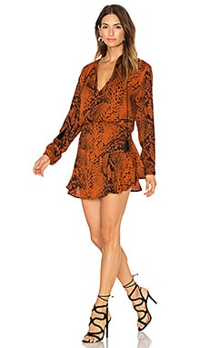 Pilar Print Mini Dress in Rust Snake