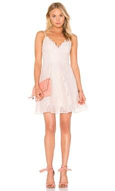 Sundream Lace Mini Dress in Shell