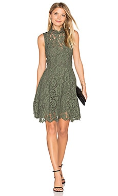Porcelain Lace Mini Dress in Khaki