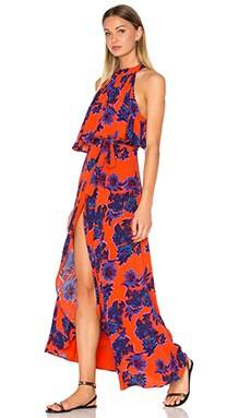 Golden Ray Maxi Dress in Passion Floral