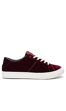 Empire Low Top Sneaker in Bordeaux