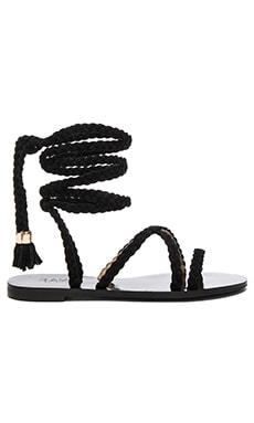 Sadie Sandal in Black