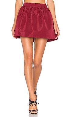 Circle Skirt in Amarena