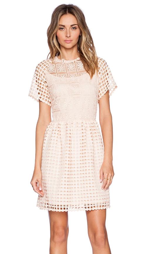 Amazoncom Say Yes to the Dress Season 14