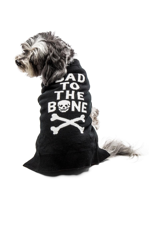Bad To The Bone Dog Sweater