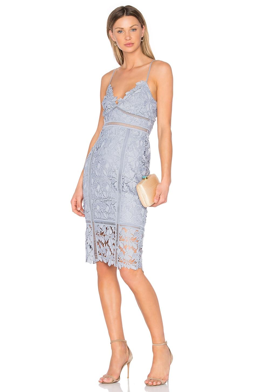 Botanica Lace Dress
