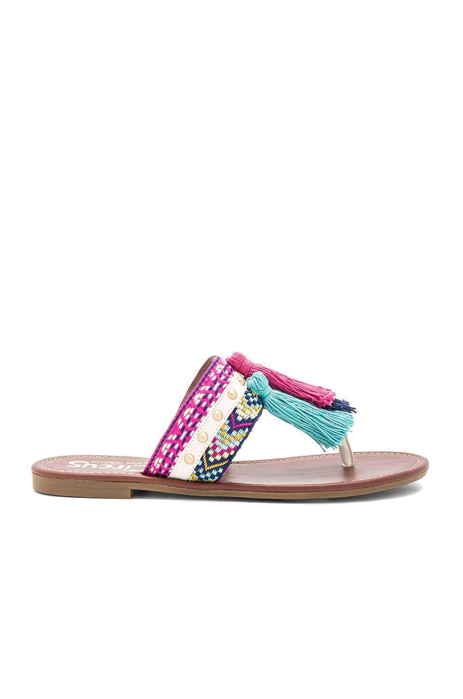 Brice Sandal