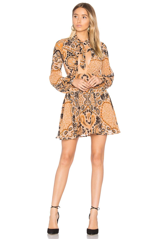 Elodi Mini Dress