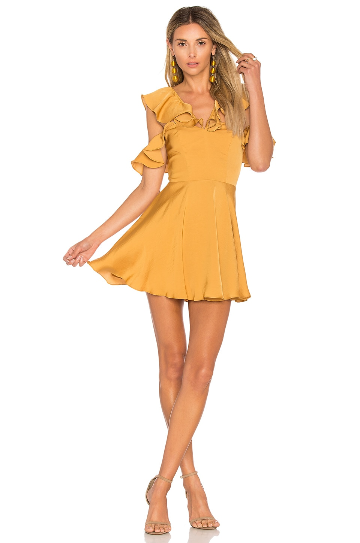 x REVOLVE Trophy Dress