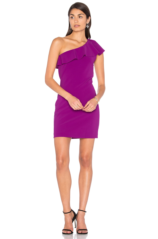 Haiden Mini Dress