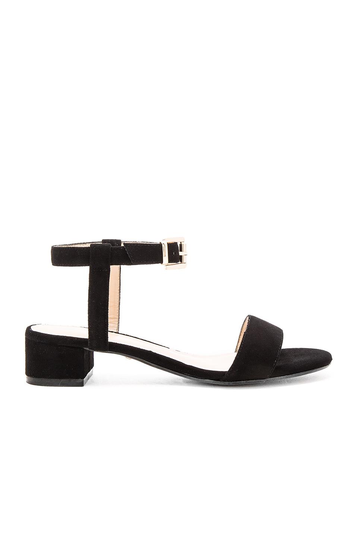 Andie Sandal