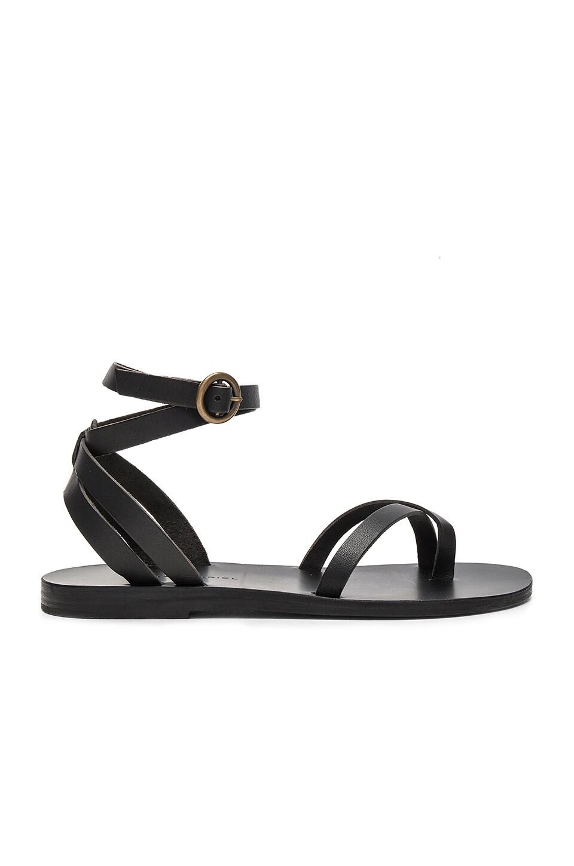 Malabar Sandal