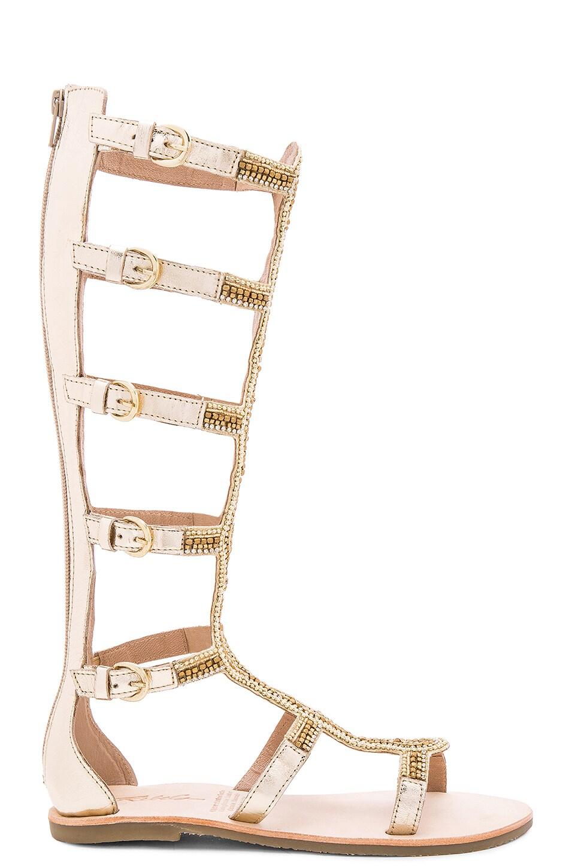 Velocity Sandal