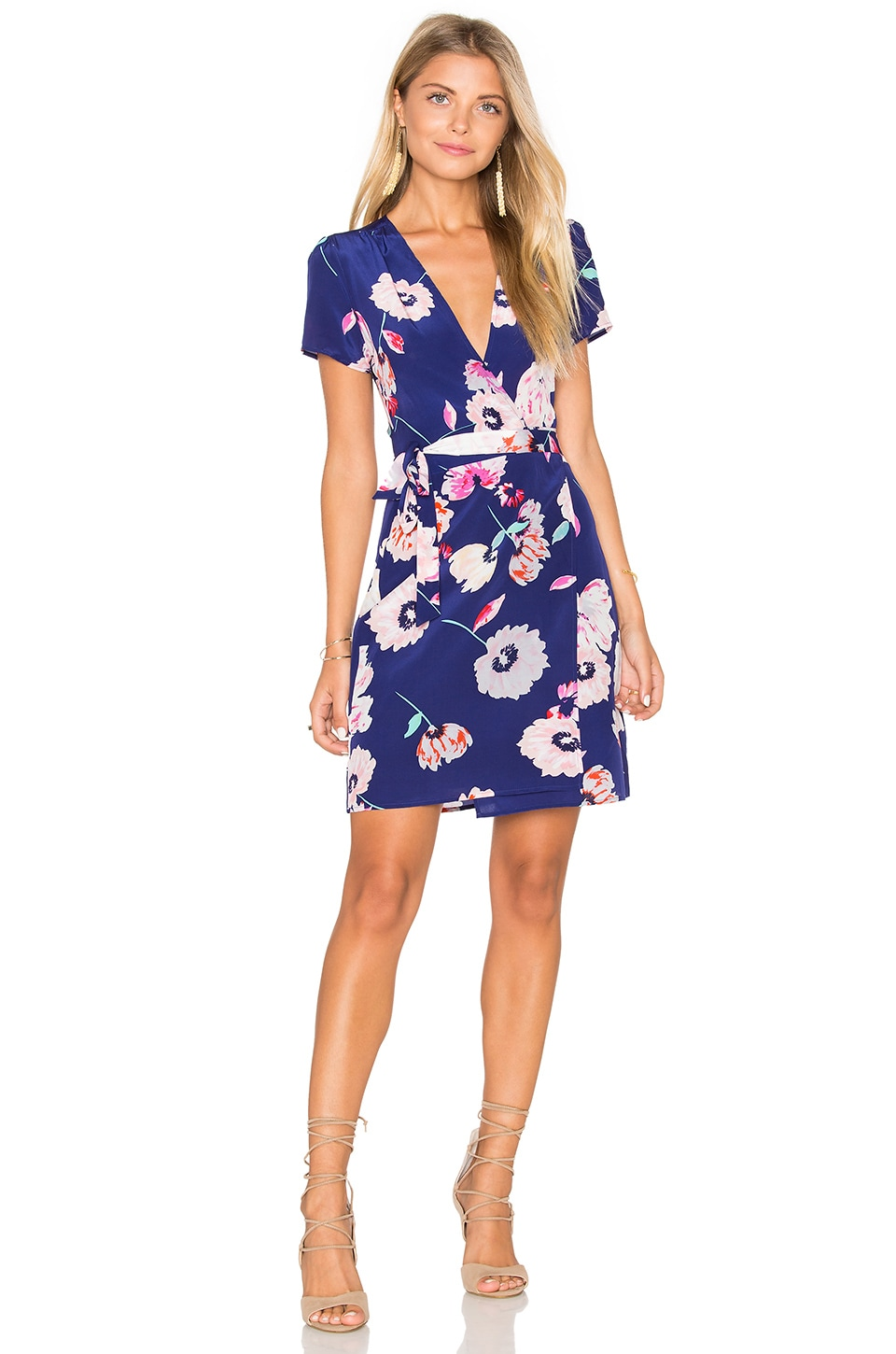 Grapevine Wrap Dress