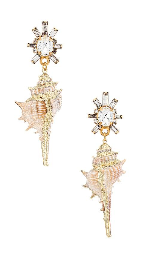 Elizabeth Cole Holland Earrings In Natural