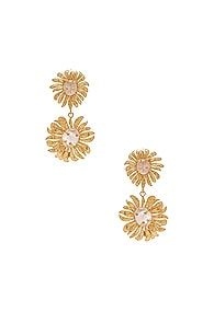 CHRISTIE NICOLAIDES Christie Nicolaides Evelynne Earrings In Metallic Gold