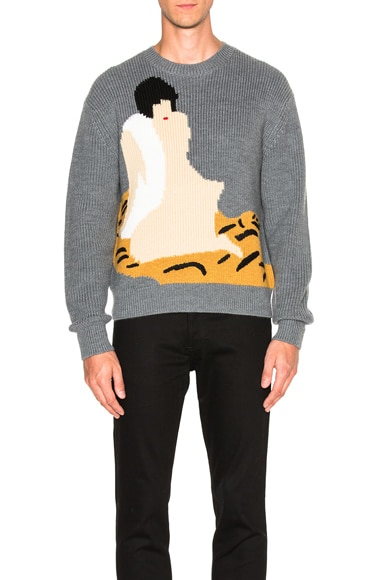 Cropped Novelty Intarsia Pullover