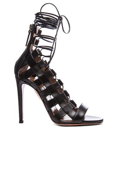 Aquazzura Amazon Leather Lace Up Sandals in Black
