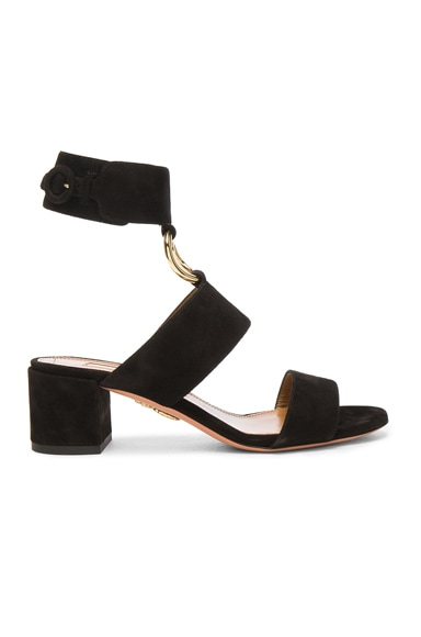 Aquazzura Suede Safari Sandals in Black