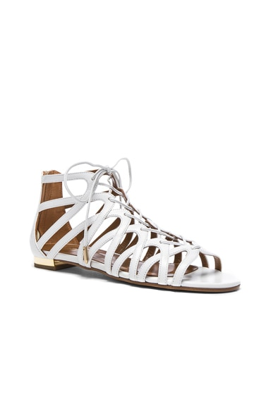 Leather Ivy Sandal Flats