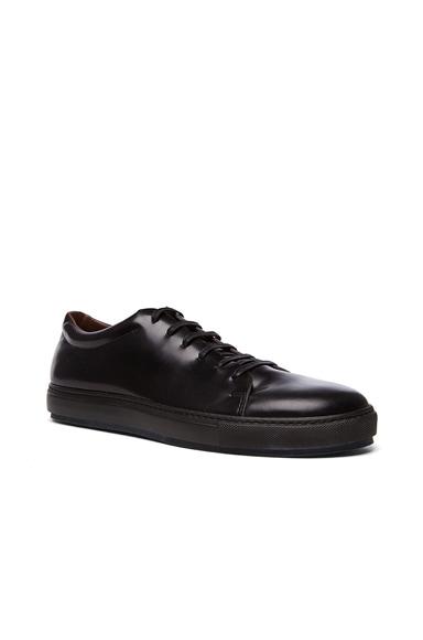 Acne Studios Adrian Calfskin Leather Sneakers in Black